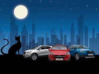 Dias da Sorte - Usados Opel